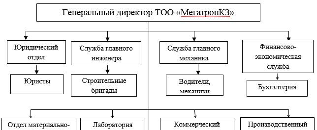 Организационная структура ТОО «МегатронКЗ»
