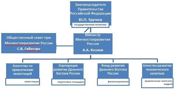 Специфика Структуры государственного политики ДФО