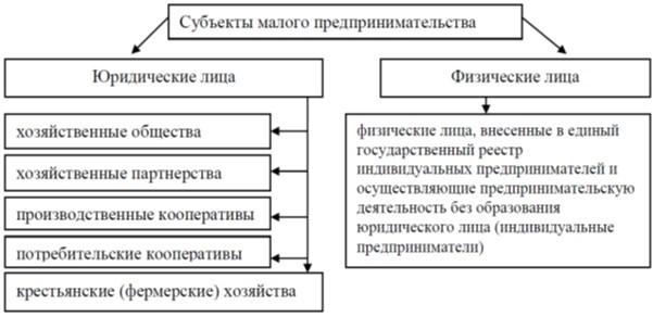 Субъекты малого предпринимательства в РФ [13, с.102]