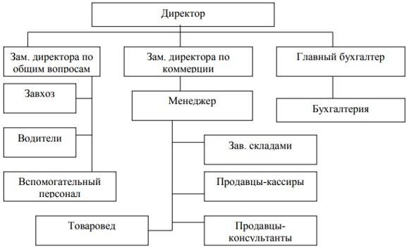 Организационная структура управления Астанинского филиала ТОО «ТД «УНКОМТЕХ»