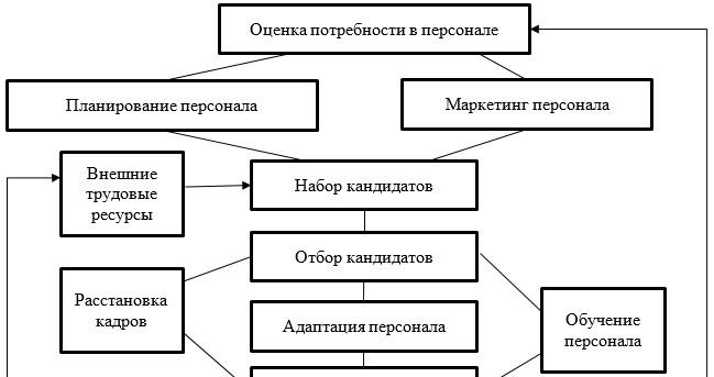 Кадровая политика как функции управления персоналом в АО «НЦН