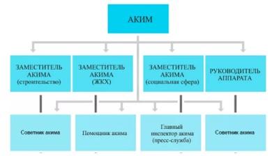 Организационная структура ГУ «Аппарат Акима села «Пржевальское» Нуринского района