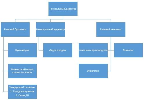 Организационная структура ТОО «ДомСтрой»
