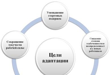 Цели адаптации персонала