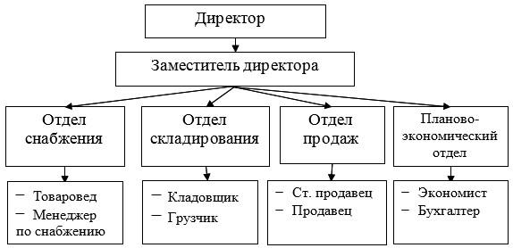 Рисунок 1 - Организационная структура управления предприятием ТОО «Alash-BQ»