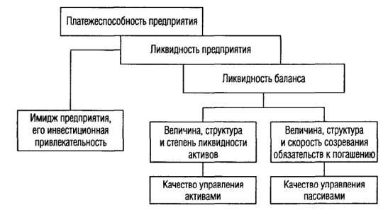 Рисунок 2 – Место понятия «ликвидность предприятия» в иерархии понятий финансового анализа
