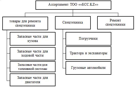 Ассортимент товаров и услуг в ТОО «КСС.KZ»_Экзамен на 5_Курсовая