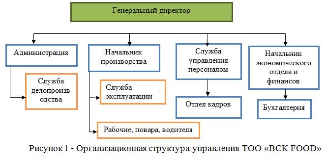 Практика по получению первичных профессиональных умений и навыков  Организационная структура управления ТОО ВСК food