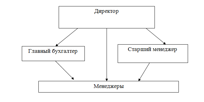 Особенности предпринимательской деятельности в туристической сфере  Организационная структура управления турфирмы ЗвездаТур