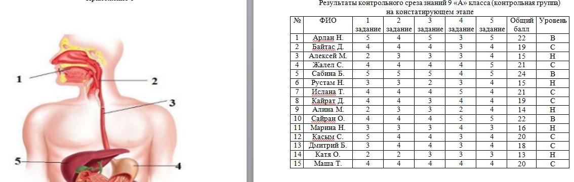 Результаты 1 этапа педагогического эксперимента_Экзамен на 5_Диплом