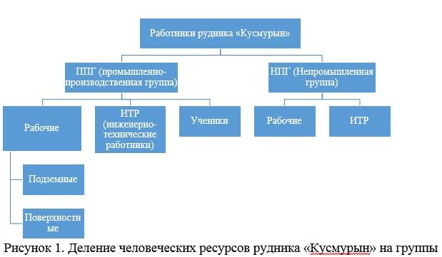 Деление человеческих ресурсов рудника «Кусмурын» на группы