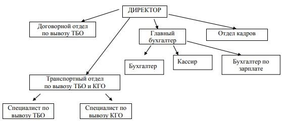 Структура организации ООО «Чистый Двор Сервис»
