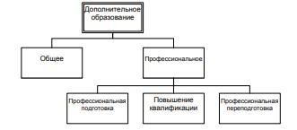 Рисунок 2 – Структура дополнительного образования