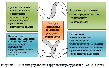 Отчет по практике_Менеджмент