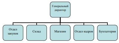 Рисунок 2.1 – Организационная структура на начальном этапе развития