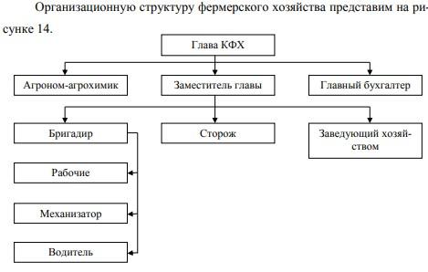 Организационная структура ИП Кульганов А. А.