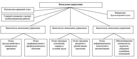 Рисунок 1 – Структура Управления занятости населения