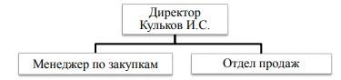 Организационная структура ИП Кульков И.С.