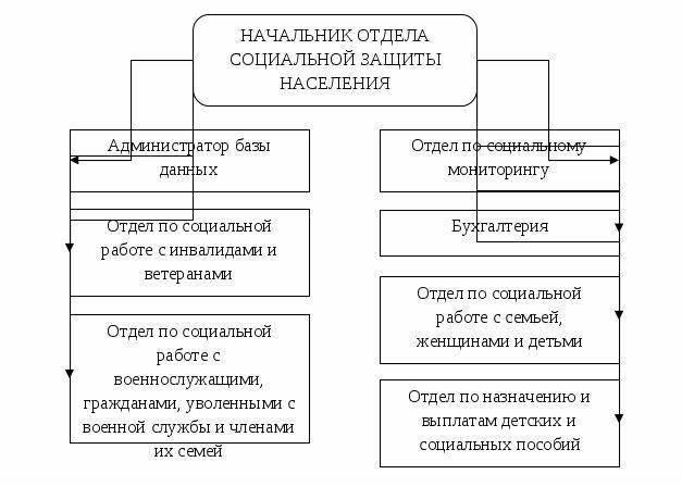 Структура отдела социальной защиты ГУ «Отдел занятости и социальных программ» Улытауского района Карагандинской области