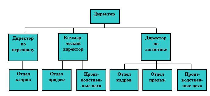 Организационная структура управления ООО «Вологодский Молочный Дом»