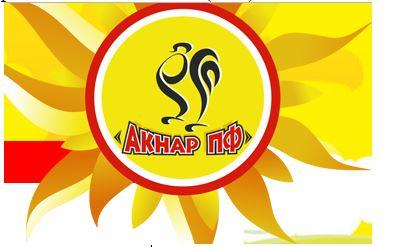 "Логотип ТОО ""Акнар"""