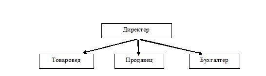 Организационная структура ИП Вальц Ю.А. магазин Продукты