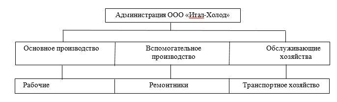 Производственная структура ООО «Итал-Холод»