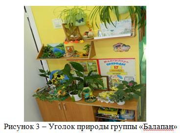 Уголок природы группы «Балапан»_ отчет о практике_экзамен на 5